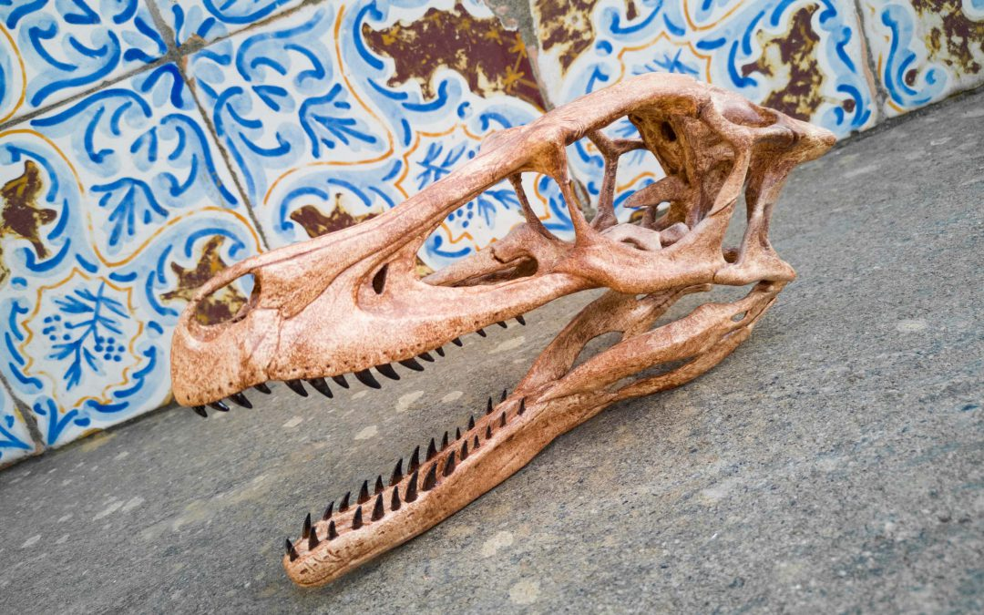 Teschio di Velociraptor ricostruito con la stampante 3D